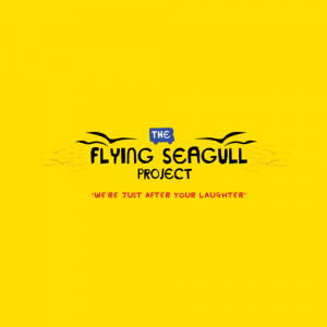 flying seagul project