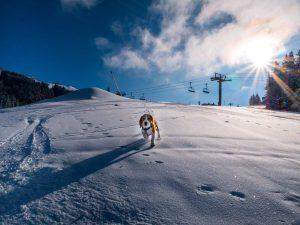 man on slopes